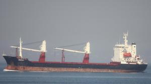 Кораб M.IZMIR (IMO: 9008079), оказал съдействие на моряците от ELLAND