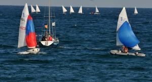 black-sea-cup