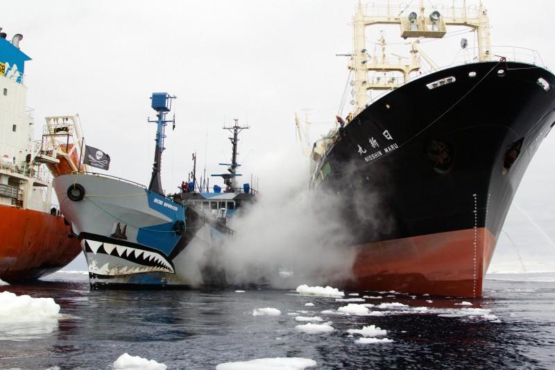 Sea Shepherd спечели от тотото своя кораб мечта