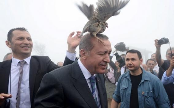 Президентът на Република Турция Реджеп Ердоган, фото: armedia.am